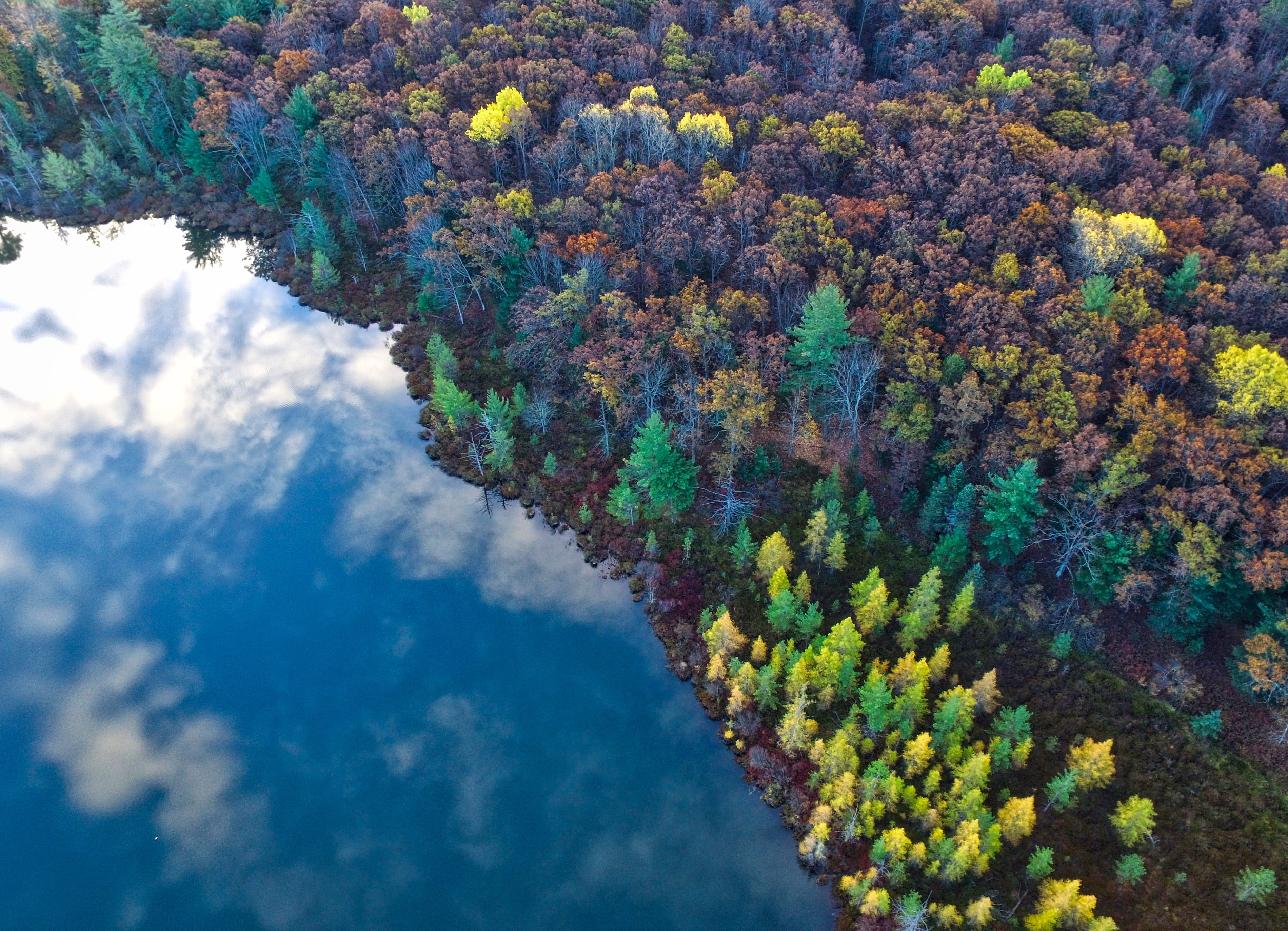 reflective lake and colorful trees